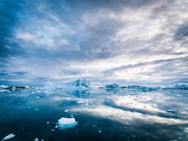 Tapete Iceberg