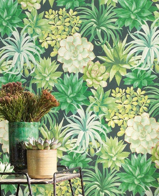 Tapete Succulenta Grün
