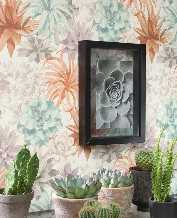 Tapete Succulenta Terrakotta