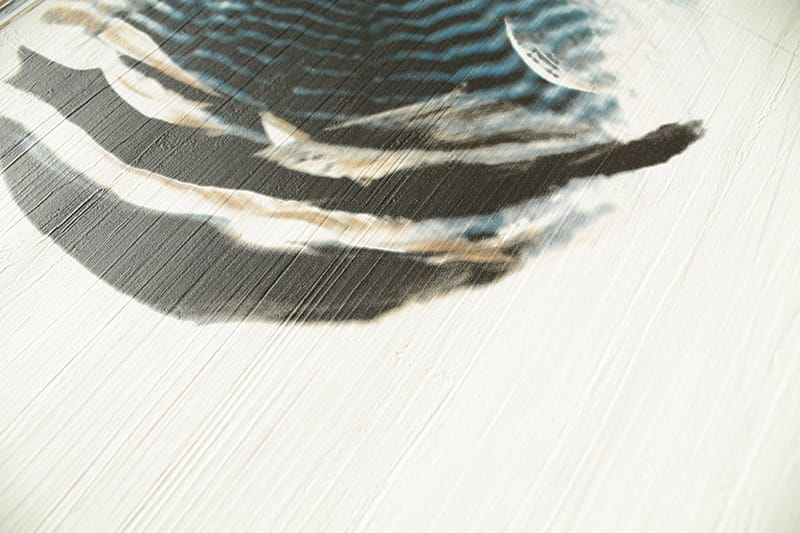 Tapete feather dunkelblau for Tapete dunkelblau
