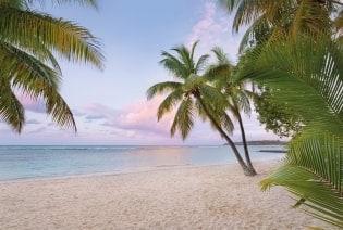 Fototapete Paradise Morning