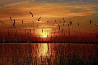 Tapete Africa Sunset 03
