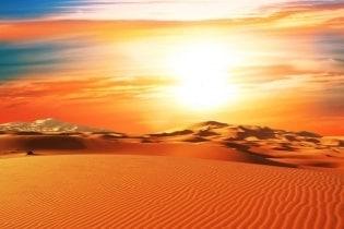 Tapete Dune