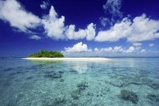 Tapete South Sea 01