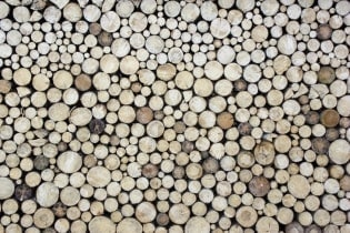 Tapete Stack of wood